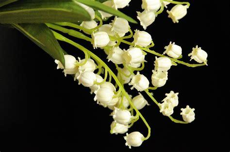 fiori di mughetto fiori mughetto piante e fiori artificiali