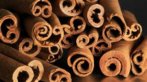 spice  cures  great benefits  cinnamon ndtv food