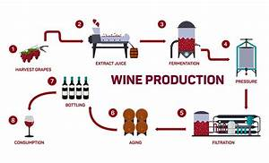 Ava Winery Turns Water Into Synthetic Wine