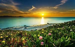 Landscape, Nature, Beach, Sunset, Clouds, Sea, Sky, Flowers, Water, Colorful, Coast, Calm