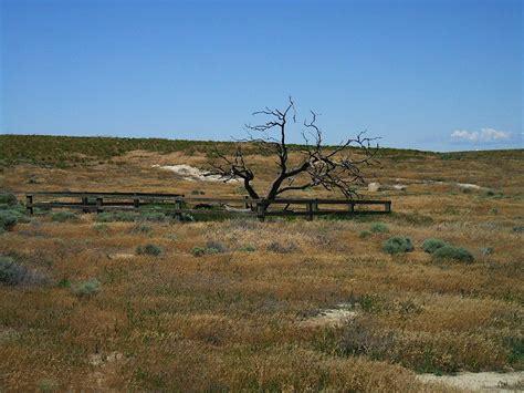 oregon trail wells springs segment wikipedia