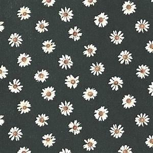 daisy flowers iphone wallpaper   Tumblr