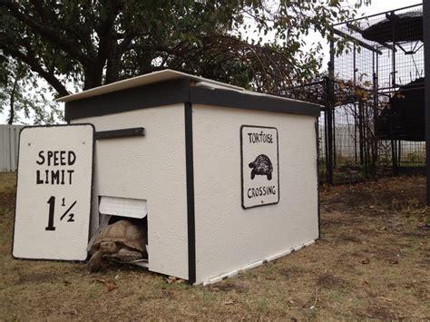 Tortoise Housing/enclosures