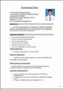 the 25 best resume format ideas on pinterest resume With www resume format