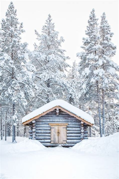 pin  terri  winter blues winter blues winter