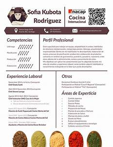 Cover Letter For Cook Chef 14 Useful Sample Chef Resume Templates To Download