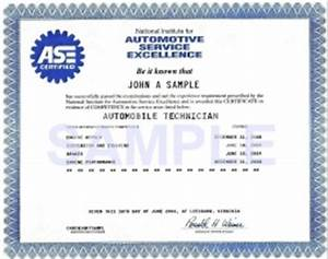 Add item to cart for Fake ase certificate