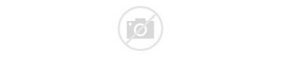 Saree Sarees Strip Indian Half Purple Shopping