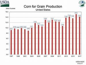 Record High Harvests Forecast For Nebraska Corn And Soybean