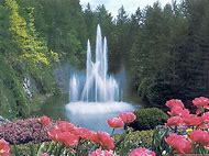 Spring Flowers Desktop Wallpapers Waterfalls