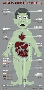 Infographic  How Much Body Parts Cost On The Black Market