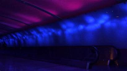 Lights Detroit Animated Terminal Water Tech Through
