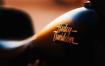 Davidson Harley Bike Wallpapers Facts 4k Motorcycle