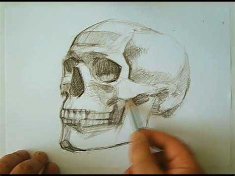 speed drawing human skull   draw skulls youtube