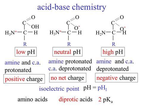 Protonated Amine by Amino Acids Carboxylic Acid Amine R Varies With Amino Acid
