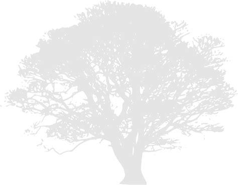 oak tree clip art  clkercom vector clip art