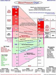 Human Blood Pressure Range Diagram