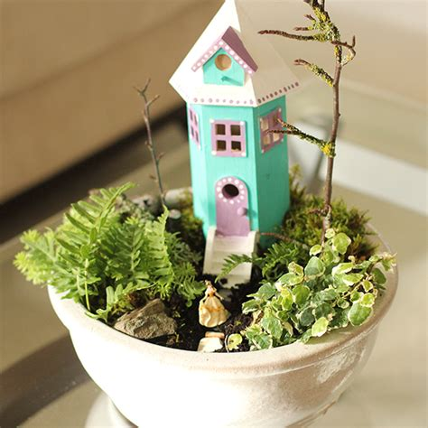 Indoor Fairy Garden  Dabbles & Babbles