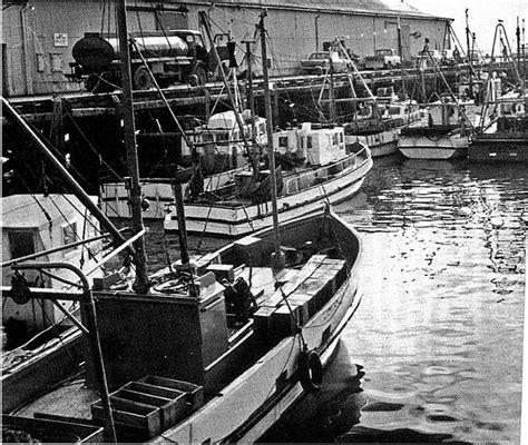 Fishing Boats Nelson Nz by Fishing In Nelson