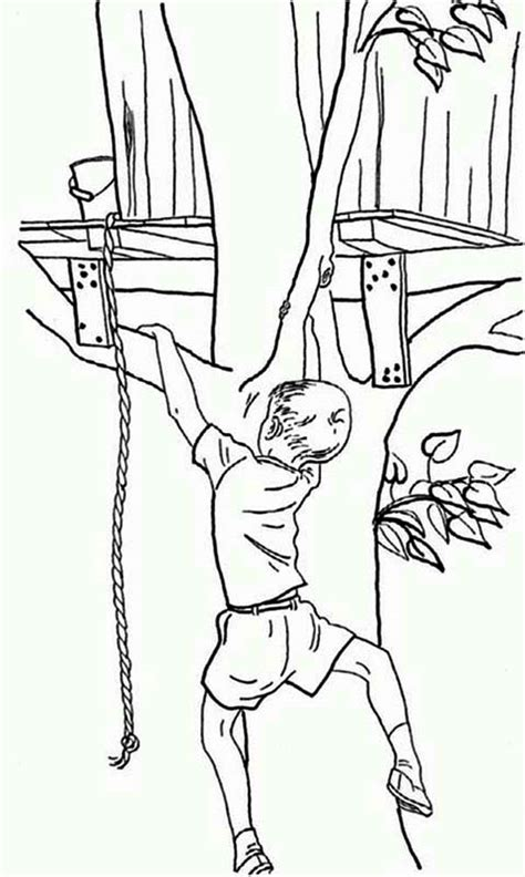 rock climbing coloring pages   print