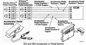34 Cummins Isx Sensor Location Diagram