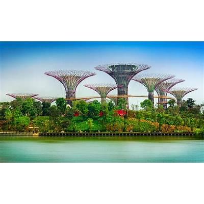Zahrada budoucnosti - Singapur SIMONA HEJLOVÁSTYLEnew.cz