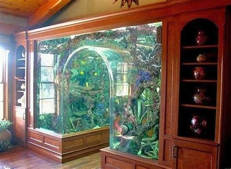 choosing the right aquarium stand tropical fish keeping