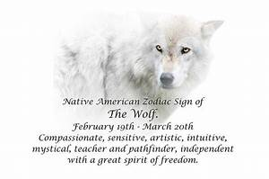 Native American Zodiac Sign Of The Wolf Photograph by
