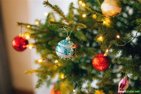 lebender weihnachtsbaum im topf pflegeanleitung