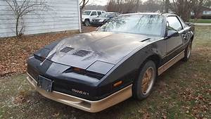 How Rare Is This 86 Trans Am