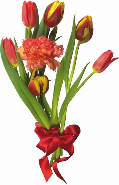 Bouquet Flowers Flower Transparent Clipart Floral Background