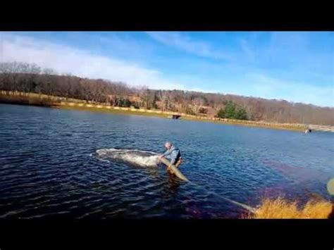 Pa Fish And Boat Commission Lakes by Trout Pfbc Green Montgomery County