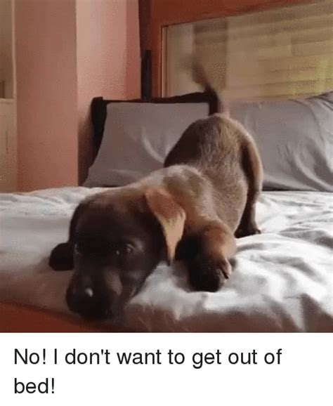Get Out Of Bed Meme - 25 best memes about mrw mrw memes
