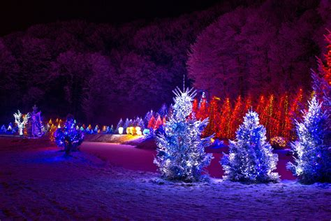 beautiful outdoor christmas trees wallpapers pics pictures images  wallpapers