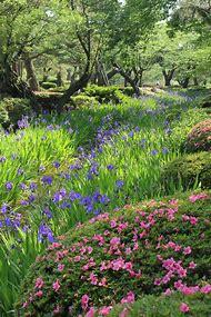Japan's Most Beautiful Gardens
