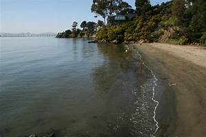 Most Bay Area Beaches Are Free From Harmful Bacteria  Report Says