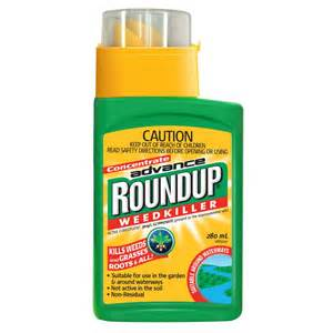 livingroom fireplace roundup gc liquid concentrate weedkiller 280ml roundup