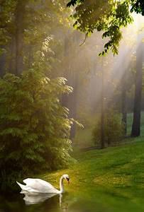 12, Photos, Of, Beautiful, Nature