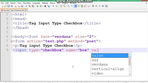 html tag input type checkbox