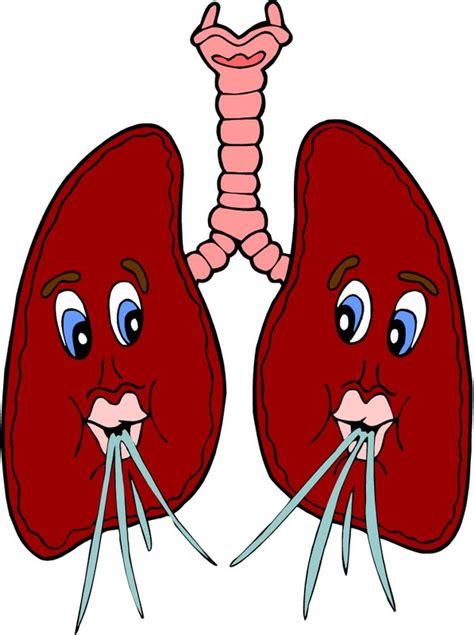 Lungs Clipart Copd Lungs Clip Cliparts