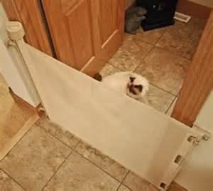retractable barriers retractable cat barrier 52