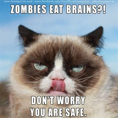 Grumpy Cat Says You'll Be Plenty Safe In A Zombie