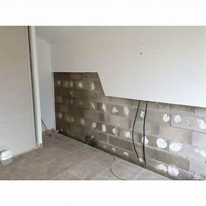 Peinture Pour Mur Humide : peinture pour mur humide stunning peindre un meuble la ~ Dailycaller-alerts.com Idées de Décoration