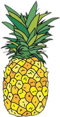 popular  trending ananas stickers  picsart