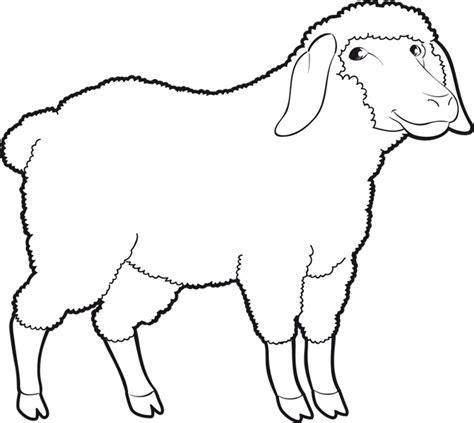 tous les ustensiles de cuisine coloriage un mouton dory fr coloriages
