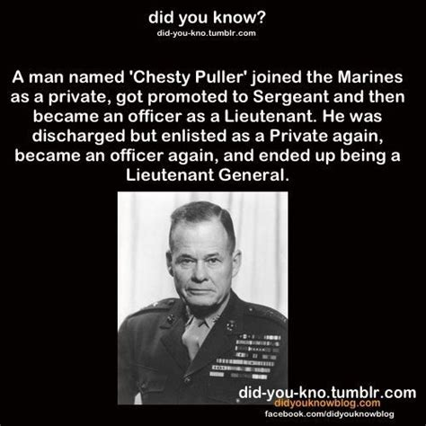 Chesty Puller Memes - chesty puller tumblr