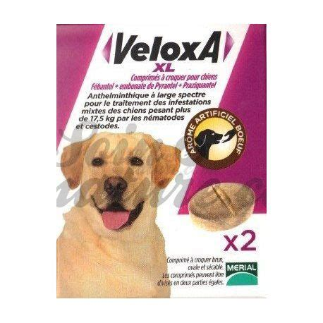 veloxa xl wurmmittel hund  kautable cpr merial kommentar