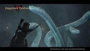Archydra - Dragon's Dogma Wiki