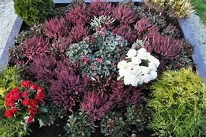 Blumen Im Winter : pflanzen grabbepflanzung ~ Eleganceandgraceweddings.com Haus und Dekorationen