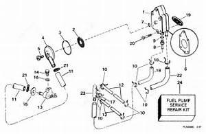 Johnson 1999 40 - J40pleea  Fuel Pump  U0026 Filter